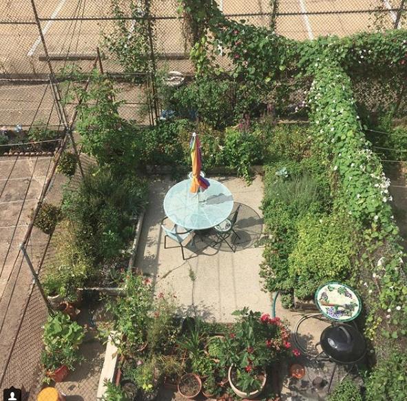 Terra Luna Herbals' Urban Garden